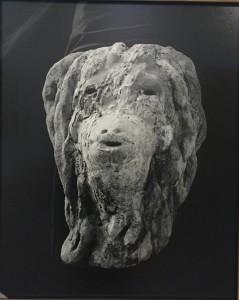 Aurélien froment, Tombeau idéal de Ferdinand Cheval, détail d'une photographie