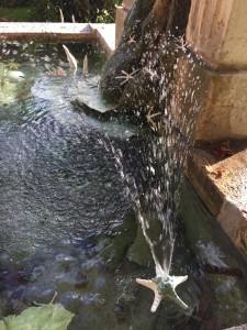 Fontaine de Ségriès.Détail, jet d'eau étoile filante.