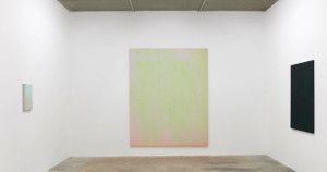 Vue de l'exposition La véranda, galerie laurent Godin, 2018