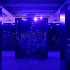 """Mesk-ellil, 2015intallation, terrariums, Cestrum nocturnum, éclairages horticoles de nuit, éclairages """"clair de lune"""" de jourt, Biennale de Lyon, 2015"""